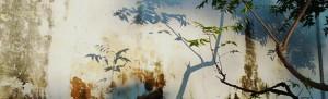 cropped-inde-mur-JDR.jpg